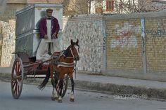 Horse cart - Quetta, Balochistan- Pakistan
