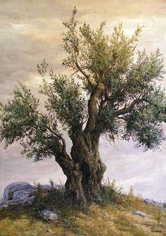 Olive tree at hill – Bizart Galleries Olive tree at hill – Bizart Galleries Watercolor Trees, Watercolor Landscape, Landscape Art, Landscape Paintings, Weird Trees, Tree Tattoo Arm, Celtic Tree, Old Trees, Tree Illustration