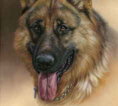 How to paint dog portrait tutorial by Katja Turnsek. Pet animal portraits in oil.