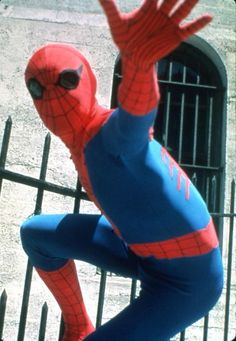 The Amazing Spider-Man 1977 Live Action TV Show / Nicholas Hammond