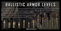Armor® Level III Body Armor is rated for calibers up to Ball at feet per second; our level III body armor is multi-hit capable, stress fracture resistant, and rated for stand-alone use. Body Armor Plates, 44 Magnum, Plate Carrier, Gun Cases, Hard Bodies, Home Defense, Nice Body, Ceramics, Guns
