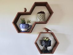 "A written and video tutorial on how to make Hexagon, ""honeycomb"" shelves using popsicle sticks, hot glue, and wood stain."