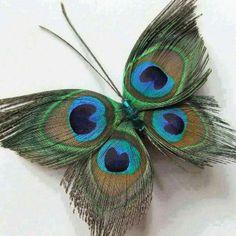 Mariposa de plumas!