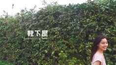KUTSUSHITAYA / SUMMER 2016 http://www.tabio.com/jp/