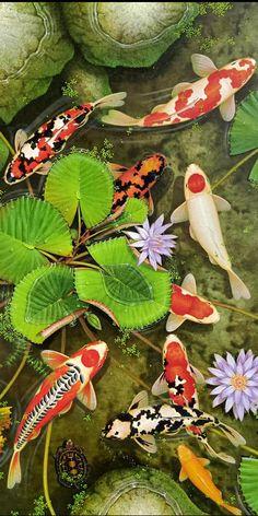 Original Koi fish painting by Thai Artist Koy Fish Drawing, Fish Drawings, Art Drawings Sketches Simple, Koi Painting, Fish Paintings, Butterfly Painting, Koi Art, Fish Art, Koi Wallpaper