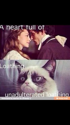 Wicked / Les Miserables / Grumpy Cat I'm crying from laughing Theatre Nerds, Music Theater, Neil Patrick, Wicked Musical, Drama, Dc Memes, Comic, I Love Music, Before Us