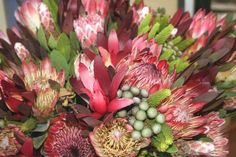 List of best weekly Cape Town Markets Most Beautiful Cities, Cape Town, South Africa, Marketing, World, Plants, Top, The World, Plant