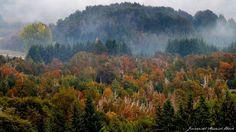 otoño www.facebook.com/fotosjimenadelmarmol