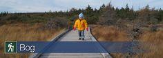 Learn more about Bog trail in Cape Breton Highlands National Park Parks Canada, Cape Breton, Nova Scotia, Highlands, East Coast, Trail, National Parks, Hiking, Walks