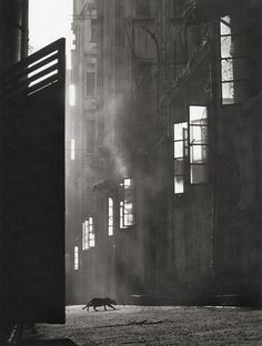 vintage everyday: Wonderful Pictures of Street Scenes of Hong Kong in the by Fan HO Fan Ho, Vintage Photography, Art Photography, Goldscheider, Man Ray, Ansel Adams, Urban Life, Street Photographers, Black And White Photography