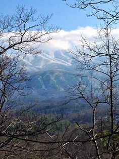 Snowy mountain tops, visible from Chestnut Top trail, Great Smoky Mountains National Park, February 2014.