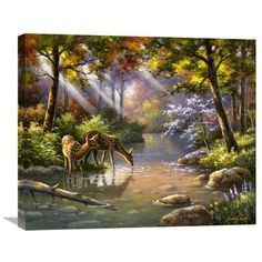 Global Gallery 'Doe Ray Me Creek' by Sung Kim Painting Print on Wrapped Canvas Size: