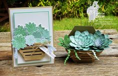 Oh so succulent, Stampin' Up! With a bow on top Paper Succulents, Succulents Garden, Rubber Stamping Techniques, Cactus, Pop Up Box Cards, Card Making Inspiration, Greeting Cards Handmade, Stampin Up Cards, Deco