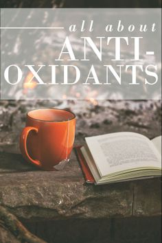 What are Antioxidants, anyway? How can they help your skin?