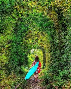 Check out the most Instagrammable places in Romania, it is a list of the most beautiful places to visit in Romania. An Ultimate Guide to Romania. Beautiful Places To Visit, Most Beautiful, Tunnel Of Love, Bulgaria, Hungary, Travel Inspiration, Road Trip, Around The Worlds, Holidays