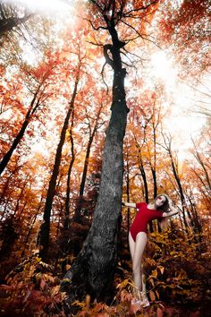 Zia Vey - fashion, glamour, model, dress, nymph, flowers, spring, concept, forest, outdoor, tree, gorgeous, blooming, slim, natural, floral, autumn, eco, vivid, summer, rain-forest, female, posing, feel, elegant, fantasy,v