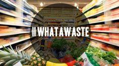 Food Waste, Zero Waste, Campaign, Fair Grounds, Plants, Travel, Eggs, Viajes, Destinations