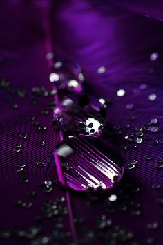 LOVIN this abstract purple rain drops!!!! <3