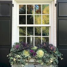 36 Fall Windows Boxes Decorating You Need To Try Fall Flower Boxes, Window Box Flowers, Winter Flowers, Winter Window Boxes, Christmas Window Boxes, Ornamental Cabbage, Fall Containers, Diy Planter Box, Tiered Planter