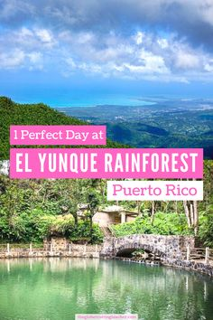 How to Spend a Day at El Yunque Rainforest in Puerto Rico | Discover El Yunque rainforest hiking and waterfalls in Puerto Rico. Use this guide to step off the beach and into Puerto Rico rainforest. #travel #puertorico
