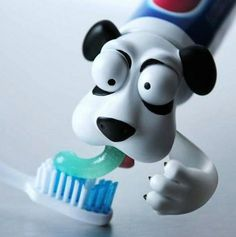 #dog tooth paste Cool product