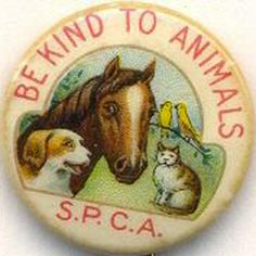 Vintage Be Kind To Animals/S.P.C.A. pinback Happy Puppy, Happy Dogs, Funny Buttons, Animal Crackers, Cute Illustration, My Animal, Bird Feathers, Vintage Advertisements, Animaux