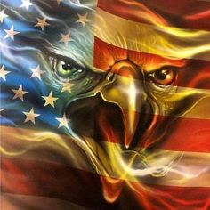War Eagle – DiamondXpres Patriotic Pictures, Eagle Pictures, Pictures Of Doves, American Flag Wallpaper, Eagle Wallpaper, American Flag Eagle, American Freedom, American Indians, Patriotic Tattoos