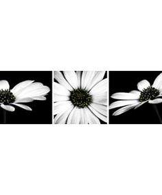 Monochrome Flower Canvas - Set of 3.