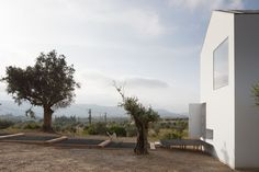 Fonte Boa House - Picture gallery