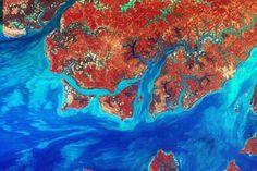 La NASA celebra el 'Día de la Tierra' desde el espacio - Esta imagen de Guinea-Bissau, ... | Ciencia | EL MUNDO | Memorias de Orfeo | Scoop.it