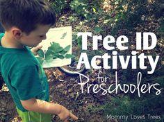 Tree Identification Nature Walk for Preschoolers (free printable) Nature Activities, Kids Learning Activities, Educational Activities, Fun Learning, Outdoor Activities, Family Activities, Preschool Science, Science Geek, Preschool Crafts