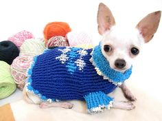 Blue Pet Clothes Dog Costume Chihuahua Sweater Crochet by myknitt. , via Etsy.