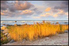 Hiiumaa island, Estonia. By Remo Savisaar