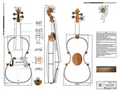 Technical Drawing of Violin by Jacob Stainer, Absam bei Innsbruck, 1668 {National Music Museum} Lashof Violins