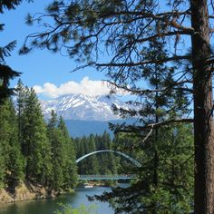 shasta lake single personals Find shasta lake homes for sale with the real estate book view property listings and connect with real estate agents in shasta lake, ca.