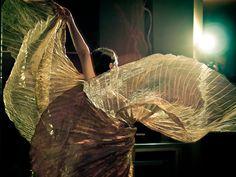 Izis Wings by Caramel Belly Dance