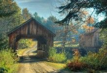 Wooden Tree Gate Over Road Nature Pic