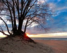 Great Lakes, Lake Michigan, Photography, Tree, Nature, Blue, Coral, White, Wall Art, Sand, Waves, Fire, Sunset, Clouds, Warren Dunes, Red by GreatLakesViews on Etsy