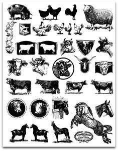 Livestock Clip Art by Cathe Holden JustSomethingIMade.com