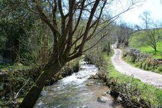 RUTA DE LA RIBERA DEL RÍO DE LA PEÑA ASTURIAS ( NAVA) : Rutas de senderismo Asturias