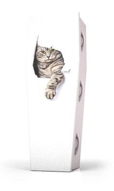 Dutch Funeral Design - Dieren - Kitty Cat