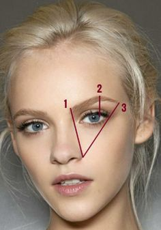 Brow definition and exact measurements