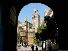 Sevilla--one of my favorite places in Spain Travel Around The World, Around The Worlds, Just Go, To Go, Places To Travel, Places To Visit, Places In Spain, Best Start, Google Images