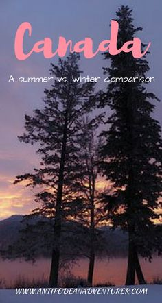 A summer vs. winter comparison of visiting Canada! : A summer vs. winter comparison of visiting Canada! Travel Guides, Travel Tips, Slow Travel, Travel Packing, Budget Travel, Canada Travel, Travel Usa, Travel Europe, Visit Vancouver