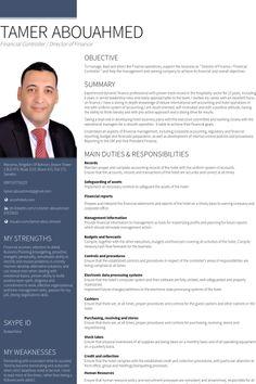 financial controller egypt resume example cv pinterest