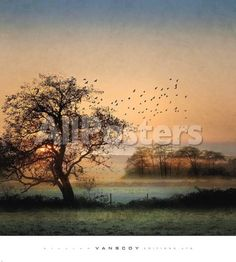 Good By Day Birds by Panoramic Images Landscapes Art Print - 69 x 76 cm