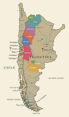 Argentina and Chile wine map Chilean Wine, Wine Lovers, Wine Folly, Chateauneuf Du Pape, Champagne, Wine Vineyards, Wine Education, Vides, Italian Wine