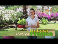 Maceta con llanta en forma de flor - YouTube