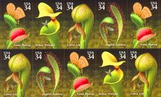Carnivorous plants, stamps