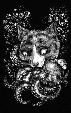 The Cat and the Octopus